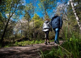 Coaching i skogen – naturmetoden gir gode resultater.